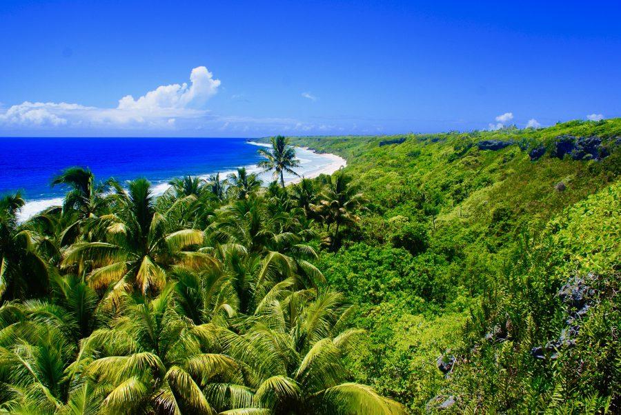 Bild: Henderson-Insel
