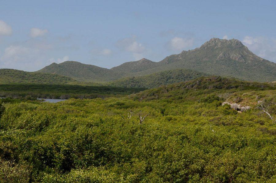 Bild: Christoffelberg bzw. Sint Christoffelberg auf Curaçao