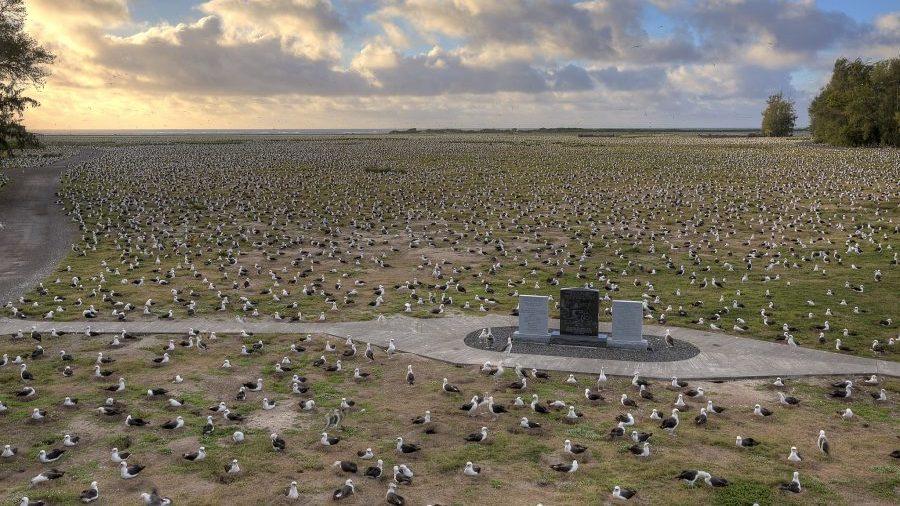 Bild: Gedenksteine der Schlacht um Midway (Battle of Midway National Memorial) auf der Sand-Insel