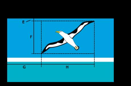 Flaggenspezifikation: Midway Atoll