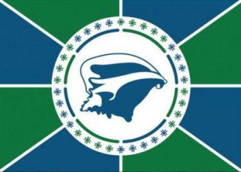 Flagge: Martinique
