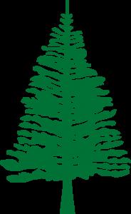 Detailansicht des Flaggenbadges: Norfolk-Insel