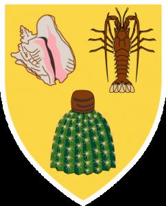 Detailansicht des Flaggenbadges: Turks- und Caicos-Inseln